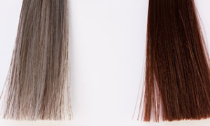 Жизненный цикл роста и выпадения волос